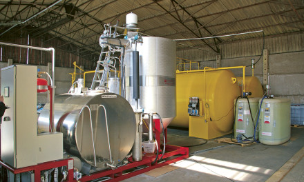 The quest for environmentally-adapted fuels