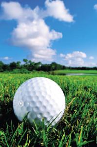 Golfbanor kan ansöka om miljödiplom.