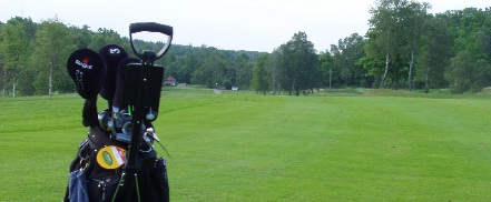 Bacteria Fight Golf Course Mold