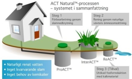 Natural cycle purifies wastewater