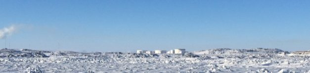 Lead-cooled minireactors recycle fuel