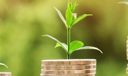 Sustainable funds carry the Nordic Swan Ecolabel