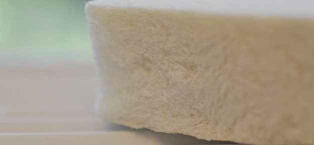 Swedish forests can turn into fossil-free foam
