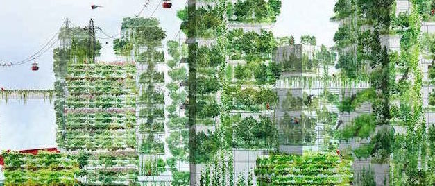 Lush city forests clean the air